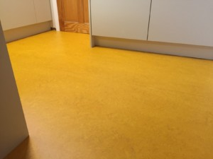 Marmoleum linoleum in sunset yellow winder carpets and beds